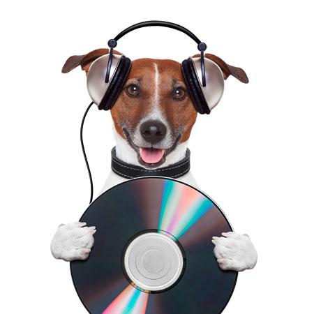 CD Herstellung